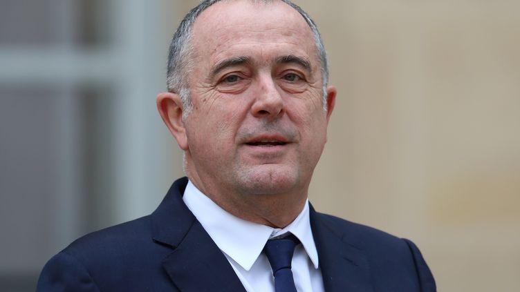 Le ministre de l'Agriculture, Didier Guillaume, le 9 janvier 2019, dans la cour de l'Elysée à Paris. (MUSTAFA YALCIN / ANADOLU AGENCY / AFP)