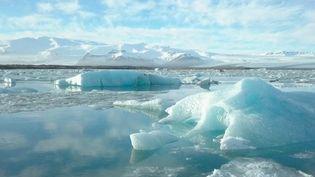 Quelles sont les conséquences concrètes de la fonte des glaces dans un pays comme l'Islande ? Les effets du réchauffement climatique sont de plus en plus visibles avec un changement radical des paysages. (France 2)