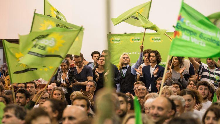 Lors d'un meeting d'Europe Ecologie-Les Verts pour les élections municipales à Paris, le 24 septembre 2019. (MAXPPP)