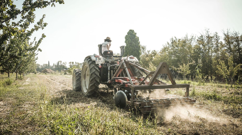 ENQUETE FRANCEINFO. Agriculture : pourquoi la France est-elle en retard sur ses objectifs de conversion bio ? - franceinfo