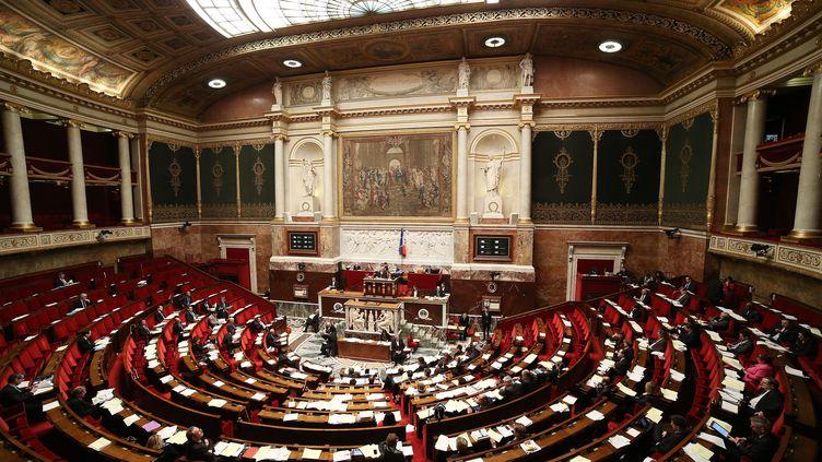 L'examen du projet de loi ouvrant le mariage aux couples de même sexe à l'Assemblée nationale s'est terminé samedi 9 février 2013 au petit matin. ( MAXPPP)