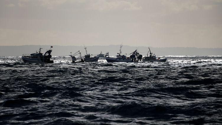 Une flottille de chalutiers attend le début de la saison des coquilles Saint-Jacques dans la baie de Seine, le 13 novembre 2017. (PASCAL ROSSIGNOL / REUTERS)