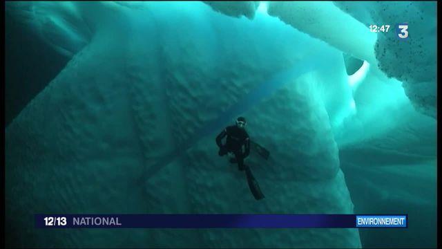 Un pompier de Brest a plongé en apnée sous la banquise du Grand Nord canadien