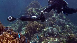 Un plongeur photographie la Grande barrière de corail à l'aide d'un robot sous-marin, au large de l'Australie. (CATLIN SEAVIEW SURVEY / UNIVERSITY OF QUEENSLAND)