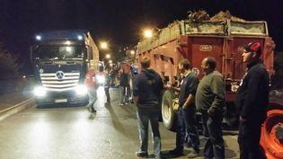 Des agriculteurs ont érigé six barrages routiers entre la France et l'Allemagne dans le Bas-Rhin. (C. LAEMMEL / FRANCE 3 ALSACE)