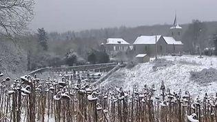 Le village de Saint-Georges-Butavent (Mayenne), le 21 janvier 2015. ( FRANCE 2)