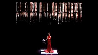 Natalie Dessay sur la scène du Théâtre Olympia de Tours  (Copie d'écran France 3)