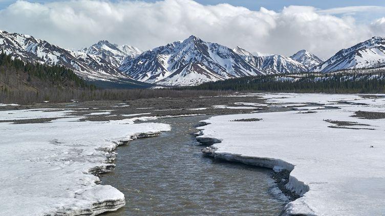 La rivière Teklanika, au printemps, en Alaska, en octobre 2018. (ROBERT VALARCHER / BIOSPHOTO)