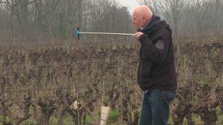 Grâce à internet, les viticulteurs trouvent de nouveaux débouchés. (CAPTURE D'ÉCRAN FRANCE 3)