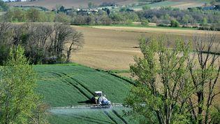 Quelque55 000 hectares de terres agricoles changent d'usage chaque année, selon laFNSafer. (REMY GABALDA / AFP)