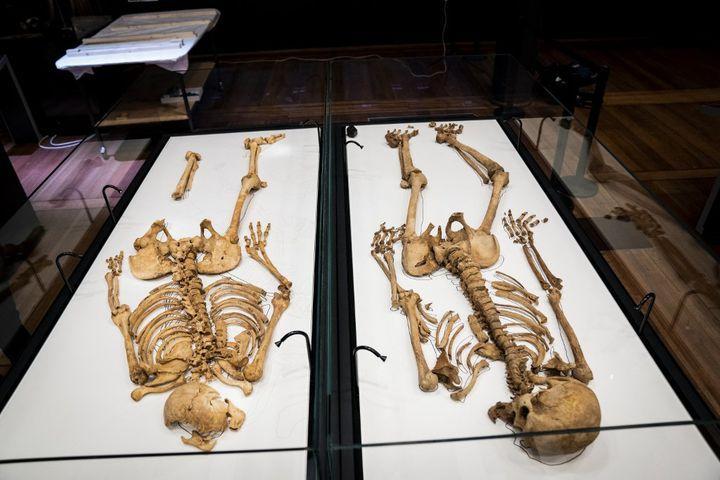 Deux squelettes de Vikings de plus de 1000 ans s'avèrent de lamêmefamille, après leur cartographie ADN (Juin 2021). (IDA MARIE ODGAARD / RITZAU SCANPIX)