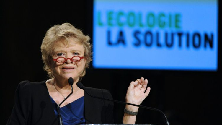 Eva Joly lors de son premier meeting de campagne à Roubaix (Nord) le 12 février 2012. (BERTRAND GUAY / AFP)