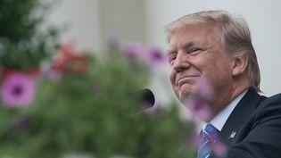 Le président des Etats-Unis, Donald Trump, lors du Memorial Day, à Arlington (Virginie), le 29 mai 2017. (NICHOLAS KAMM / AFP)