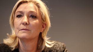 Marine Le Pen, le 17 février 2014, à Reims (Marne). (FRANCOIS NASCIMBENI / AFP)