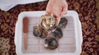 Un homme présente une huître et sa perle dans les Emirats arabes unis, le 28 mai 2013. (AHMED JADALLAH / REUTERS)