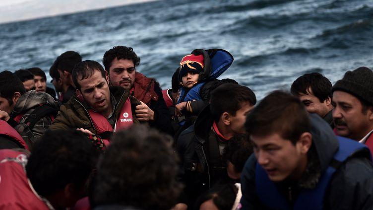 Des migrants arrivent sur l'île de Lesbos (Grèce), le 25 octobre 2015. (ARIS MESSINIS / AFP)