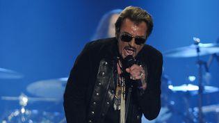 Johnny Hallyday en concert à La Rochelle en juillet 2015 (archives)  (XAVIER LEOTY / AFP)