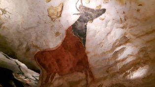Grotte de Lascaux 4, reproduction d'une peinture parietale : La vache rouge (ANNE CHEPEAU / FRANCEINFO)