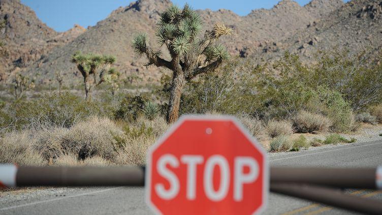 Le Joshua Tree National Park avait déjà dû rester fermer plusieus jours en 2013, déjà à cause d'un shutdown. (ROBYN BECK / AFP)