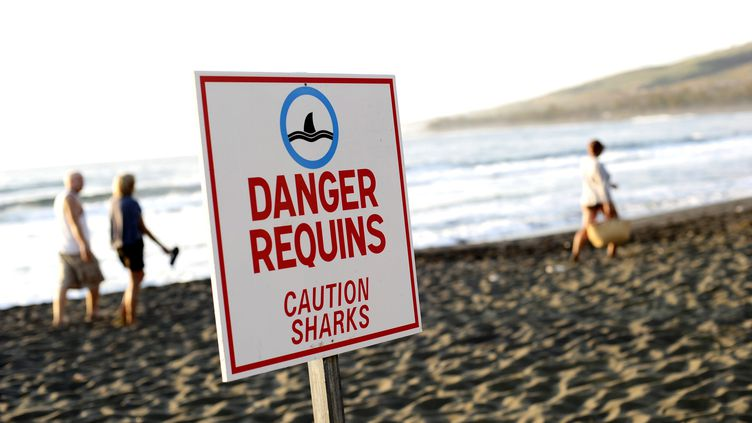 La dernière attaque mortelle de requin remontait au 14 février 2015.Une baigneuse de 22 ans avait été attrapée par un requin alors qu'elle se trouvait sur une plage du sud de l'île de La Réunion. (  MAXPPP)