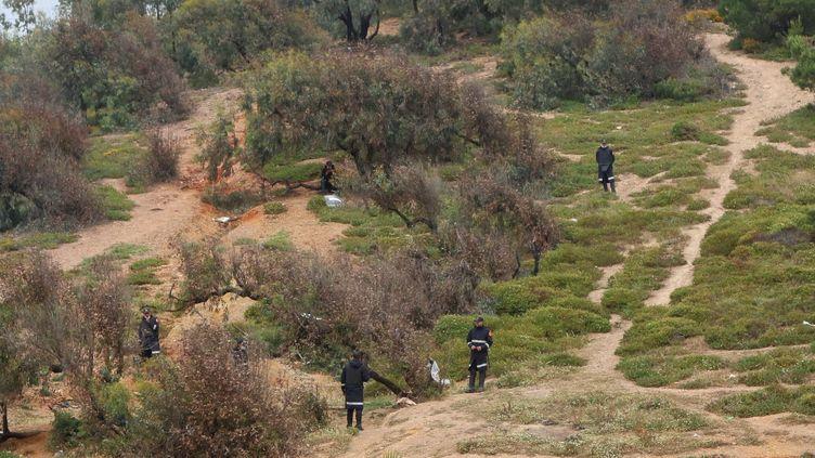 Des forces de sécurité marocaines recherchent des migrants à la frontière avec l'Espagne, le 19 mai 2021. (MAXPPP)