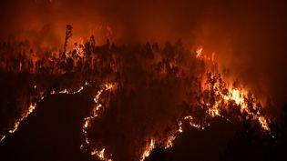 Le feu, qui s'était déclaré samedi après-midi à Pedrogao Grande dans le centre du Portugal, continuait de faire rage, se propageant aux régions voisines de Castelo Branco et Coimbra. (MIGUEL RIOPA / AFP)