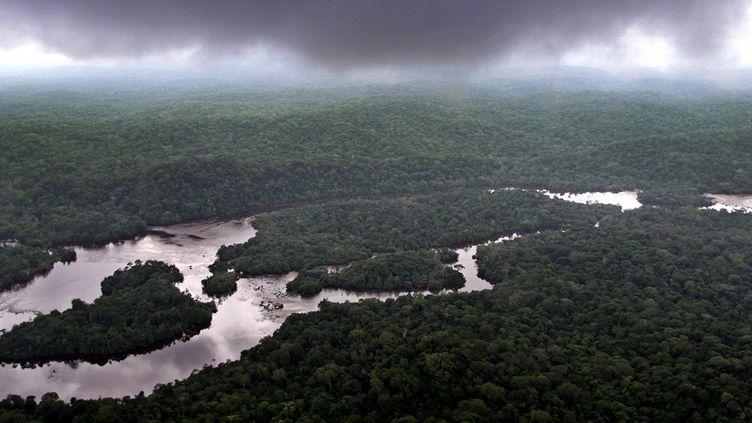 Le parc national de la Lopé au Gabon (SAURABH DAS/AP/SIPA)
