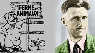 """George Orwell, auteur de """"La ferme des animaux"""", adapté, en BD par la CIA, réédité en français par les éditions L'Echappée  (Leemage / AFP)"""