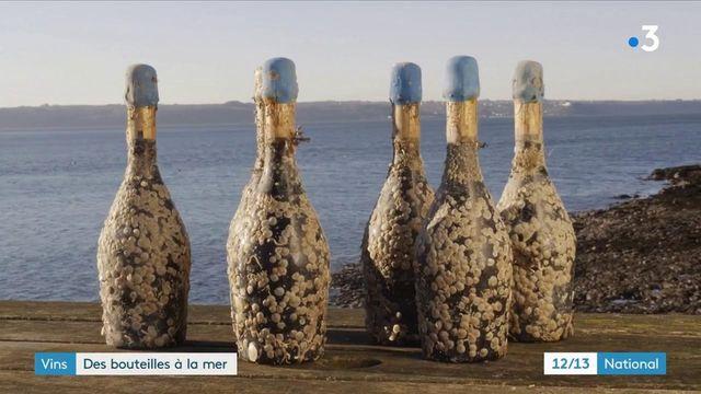 Œnologie : faire vieillir le vin sous l'eau, une tendance qui a le vent en poupe