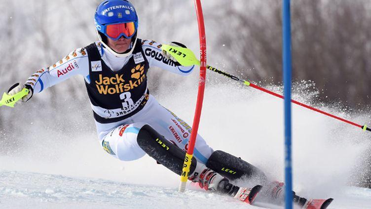 La Suédoise Maria Pietilae-Holmner (DON EMMERT / AFP)