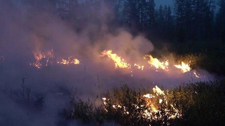 Incendies : Sibérie, Liban, Turquie... La planète en surchauffe (France 3)