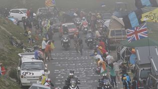 Les coureurs du Tour de France dans l'ascension du Tourmalet (Hautes-Pyrénées), le 24 juillet 2014. (CHRISTOPHE ENA / AP / SIPA / AP)