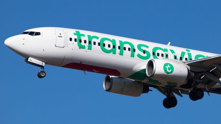 Un avion Transavia atterrit à l'aéroport d'Eindhoven, aux Pays-Bas, en février 2019. (NICOLAS ECONOMOU / NURPHOTO / AFP)