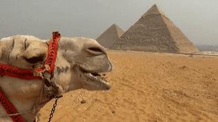 La technologie la plus sophistiquée au service de l'archéologie des Pyramides  (France 3)