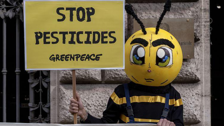 Une des nombreuses manifestations contre l'utilisation desnéonicotinoïdes. Ici à Rome (Italie), le 11 mai 2017. (STEFANO MONTESI - CORBIS / CORBIS NEWS)