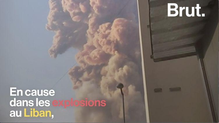 VIDEO. Le nitrate d'ammonium, responsable de nombreuses autres catastrophes industrielles (BRUT)