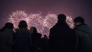 A Pyongyang, en Corée du Nord, la foule observe le spectacle du Nouvel an. (KIM WON-JIN / AFP)