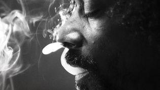 Snoop Lion n'est-il qu'un écran de fumée ?  (Jive Epic)