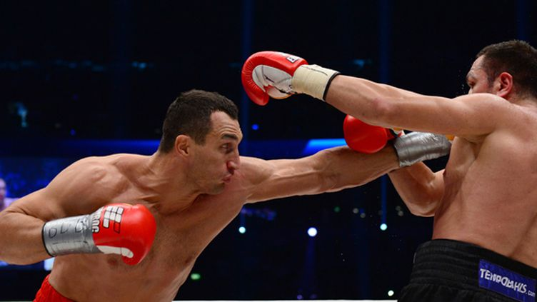 Wladimir Klitschko (à gauche) a envoyé le Bulgare Kubrat Pulev au tapis.  (JOHN MACDOUGALL / AFP)