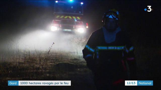 Gard : 1 000 hectares détruits dans les incendies