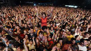 Ce que voient les artistes depuis la scène ...  (AFP)