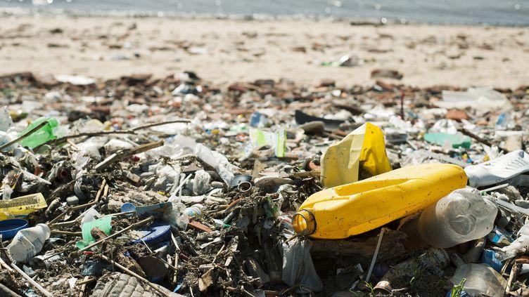 Des déchets plastiques sur une plage. Photo d'illustration. (FREDERIC CIROU / MAXPPP)