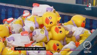 Des canards fabriqués en Chine (France 2)