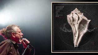 Robert Plant aux Eurockéennes, juin 2014  (SEBASTIEN BOZON / AFP)