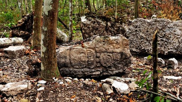 La cité maya découverte dans l'Etat de Campeche (Mexique), était restée cachée dans la forêt pendant des siècles  (ESPECIAL / NOTIMEX)