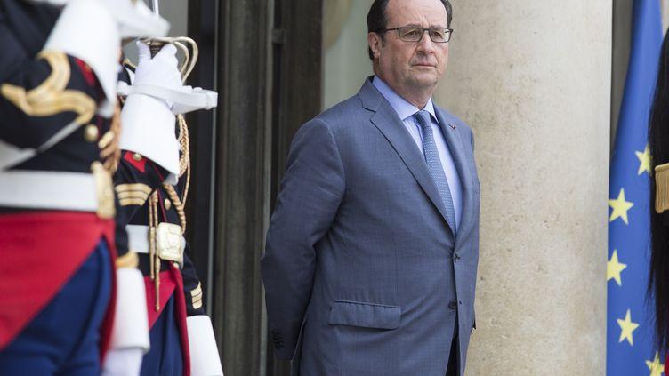 François Hollande, le 21 juin 2016 à l'Elysée. (GEOFFROY VAN DER HASSELT / AFP)