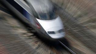 Un TGV arrive en gare de Strasbourg (Bas-Rhin), le 25 avril 2014. (VINCENT KESSLER / REUTERS)