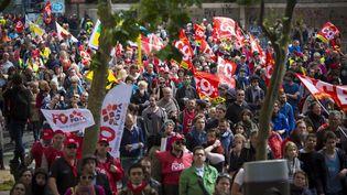Manifestation contre la loi Travail, à Paris, le 14 juin 2016. (CYRIL ABAD / HANS LUCAS / AFP)