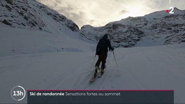 Alpes : les sensations du ski de randonnée
