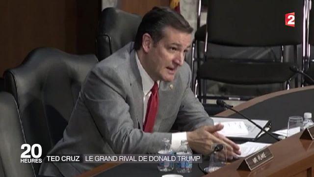 Ted Cruz, le poil à gratter de Donald Trump